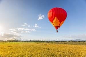 Bild von Heißluftballon über Feld