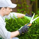 Bild von Gärtner mit Heckenschere